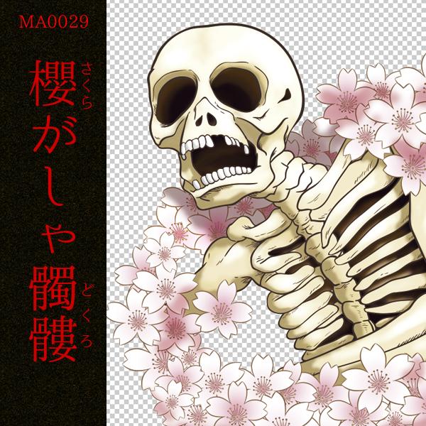 [和柄デザイン]MA-0029 桜がしゃ髑髏