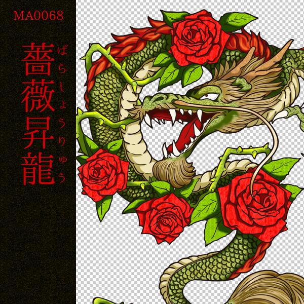 [和柄デザイン]MA-0068 薔薇昇龍