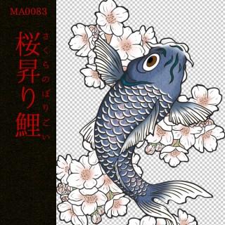 [和柄デザイン]MA-0083 桜昇り鯉